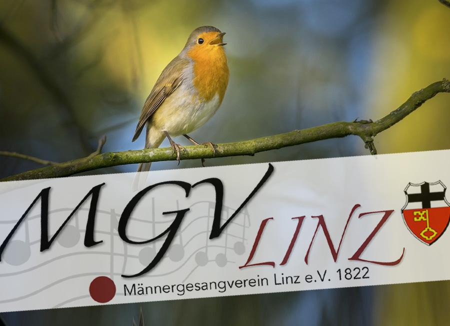 mgv-linz-ueber-sie